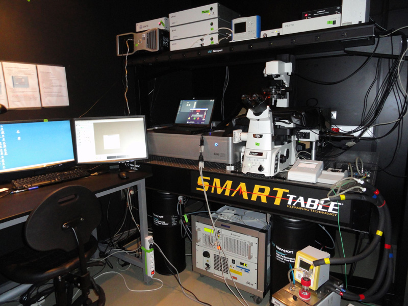 The microscope ALBA has a MaiTai tunable infra-red laser to perform FLIM and N&B