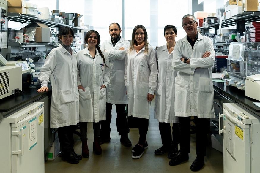 Pilar Gonzalo, Rosa Nevado, Ricardo Villa-Bellosta, Magda R. Hamczyk, María J. Andrés-Manzano, and Vicente Andrés.