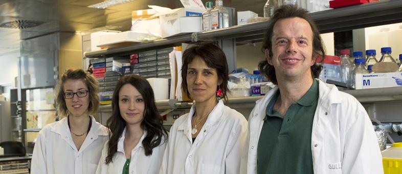 Tania Aguado, Carlota Sánchez-Ferrer, Esther Aix y Ignacio Flores.