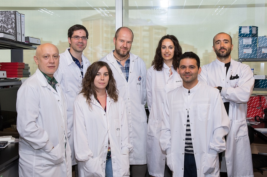 The CNIC research team. From left to right: Andrés Hidalgo, David Sancho, Sarai Martínez-Cano, Salvador Iborra, Elena Priego, Michel Enamorado, and Juan Antonio Quintana.