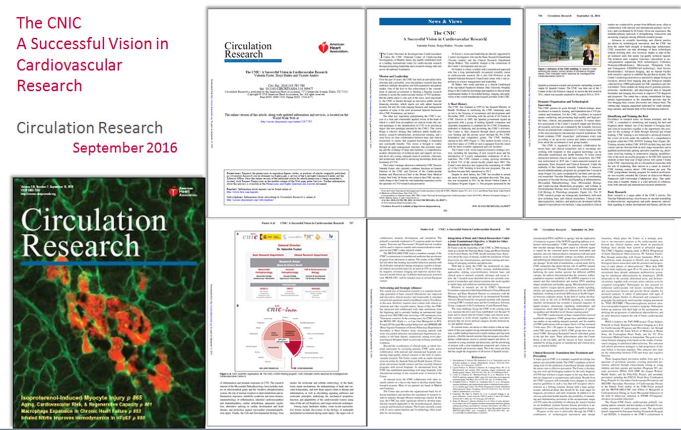 Circulation Research: The CNIC A Successful Vision in Cardiovascular Research