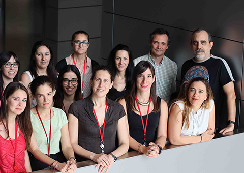 From left to right, front row: Marta Pulgarín Alfaro, Magdalena Leiva, Nuria Matesanz, Ivana Nikolic, Guadalupe Sabio; second row: Leticia Herrera Melle, Elena Rodríguez, Elena Martín García, Ayelén Santamans, Mª Valle Montalvo, Alfonso Mora, and José Antonio Enríquez.