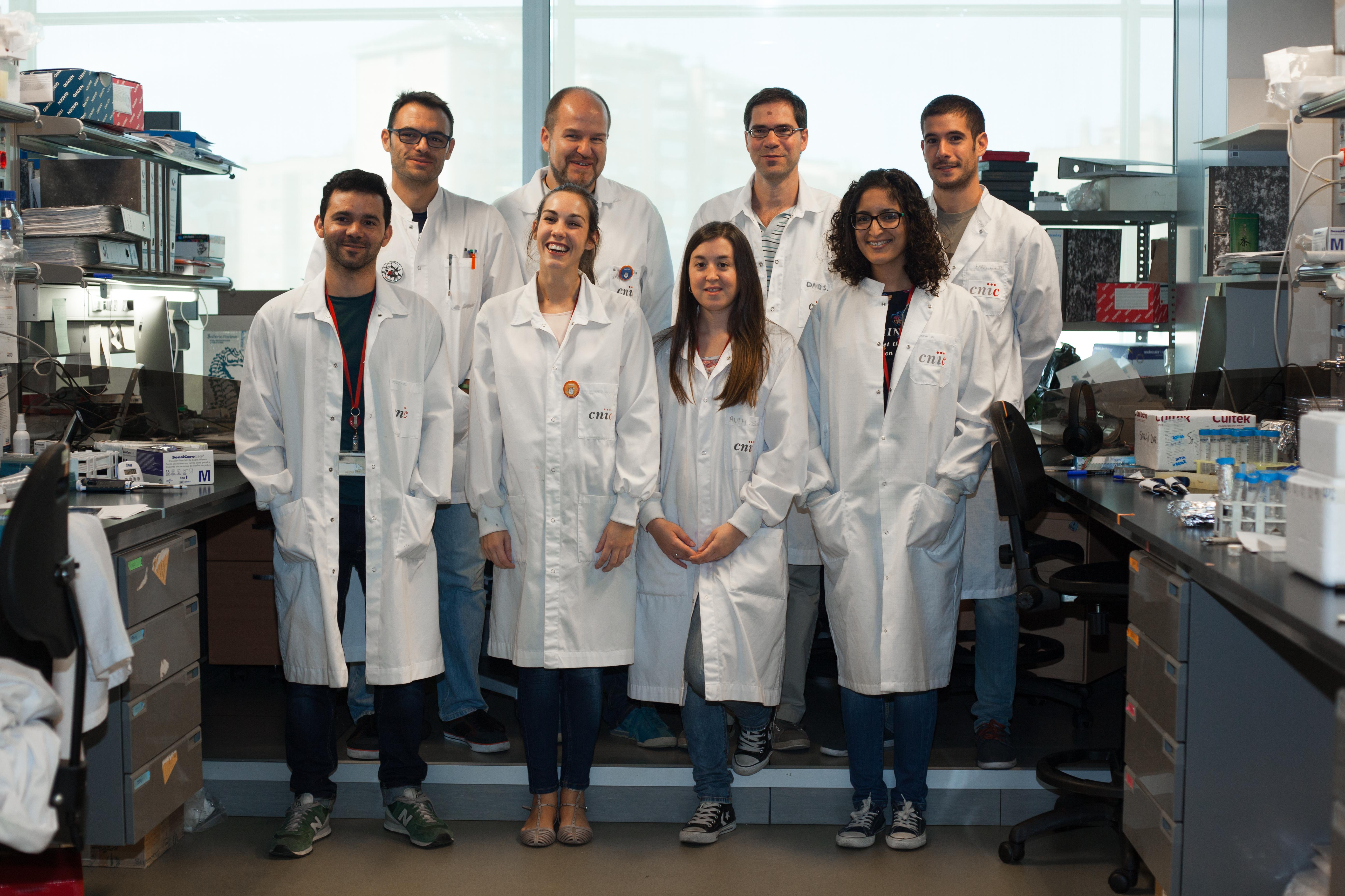 From left to right: Carlos del Fresno, Salvador Iborra, David Sancho, Fran Cueto; abajo: Michel Enamorado, María Martínez-López, Ruth Conde-Garrosa y Sofía Chayeb Khouili