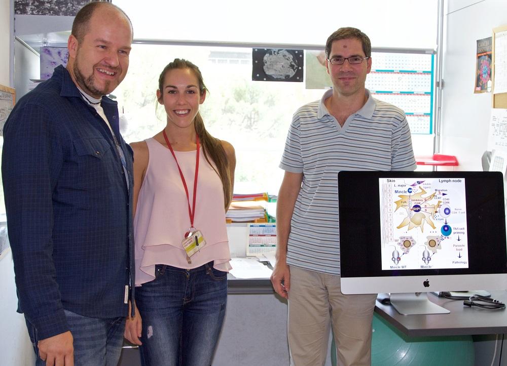 CNIC researchers Salvador Iborra, María Martínez, and David Sancho.