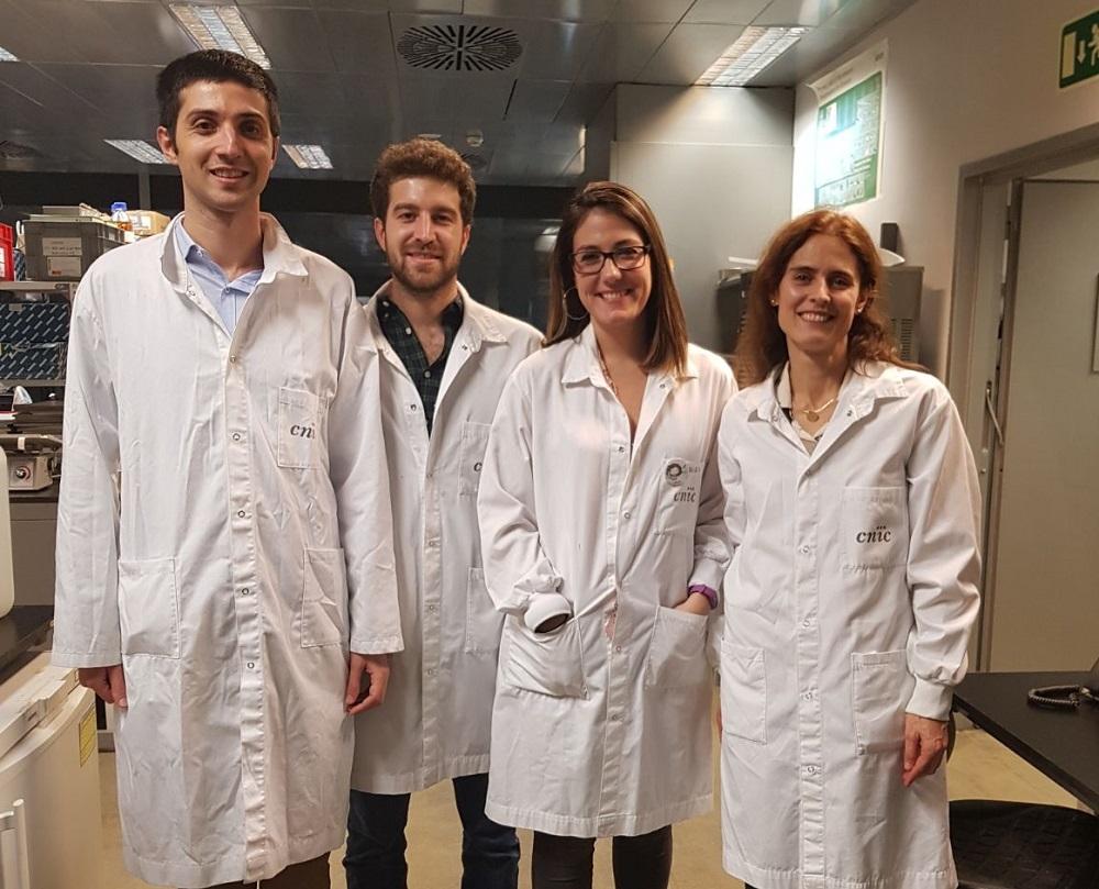 Héctor Sánchez Iranzo, Andrés Sanz Morejón, María Galardi Castilla y Nadia Mercader Huber.