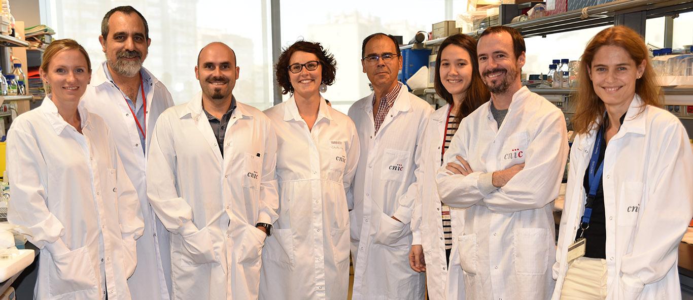 Adela M. Guaras, José Antonio Enriquez, Enrique Calvo, Sara Cogliati, Jesús Vázquez, Rocio Nieto-Arellano, Iakes Ezkurdia y Nadia Mercader.
