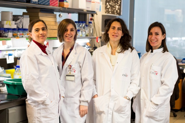 From left to right, Dr. Guadalupe Sabio, Bárbara González-Terán, Nuria Matesanz, and Ivanna Nikolic.