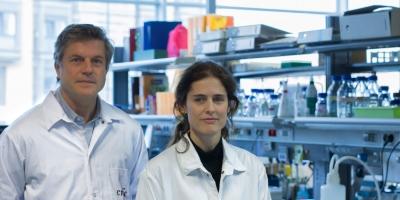 : Prof. Miguel Torres and Prof. Nadia Mercader