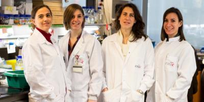 De izquierda a derecha la Dra. Guadalupe Sabio, Bárbara González-Terán, Dra. Nuria Matesanz y Dra. Ivana Nikolic