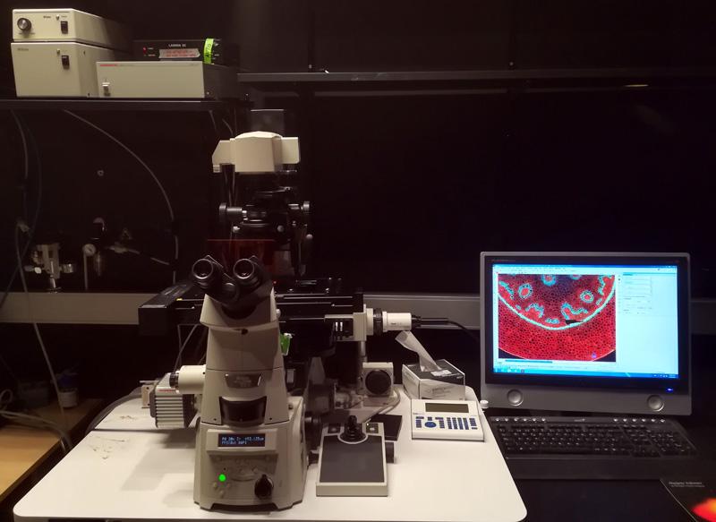 Microscopio invertido de fluorescencia de campo ancho, con cámaras CCD laterales y sistema de iluminación LED