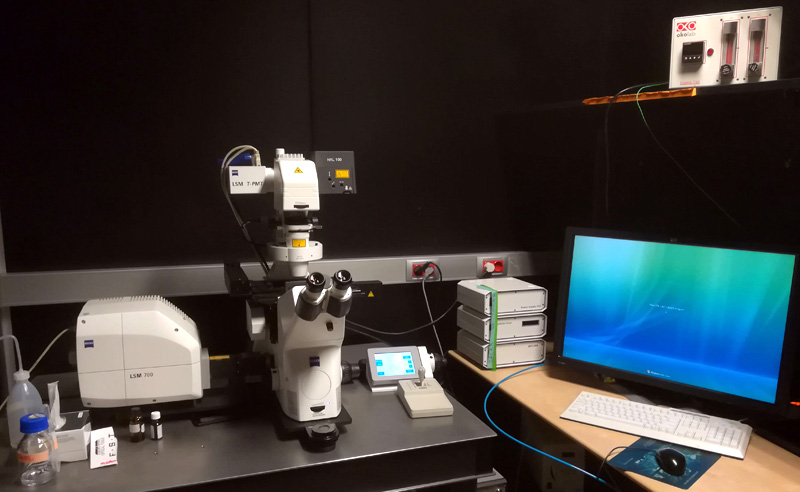 Zeiss inverted confocal microscope fully motorized with laser scanning head side mounted