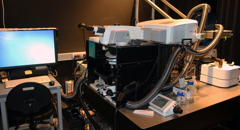 The multiphoton microscope Zeiss 780 in an upright configuration with a MaiTai tunable infra-red laser
